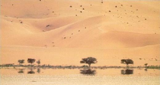 سراب بصحراء في الحر الشديد